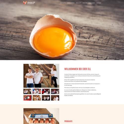 SITEKICK · WERBEAGENTUR · NÜRNBERG screenshot-eier-ell-500x500
