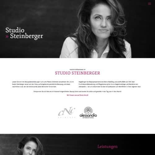 SITEKICK · WERBEAGENTUR · NÜRNBERG studio-steinberger-screenshot-500x500